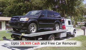 cash for wrecking 4wd in Hampton