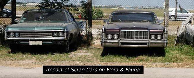 Impact of scrap car